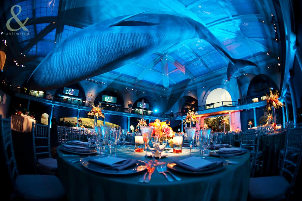 10 Annual Gala Dinner Themes For Your Next Event Best
